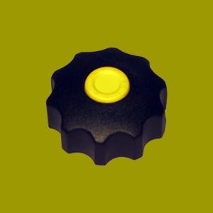 گل پیچ خورشیدی